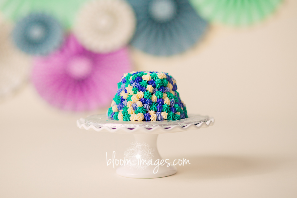 1st Birthday Cake Smash Ashburn Va Baby Photographer Newborn