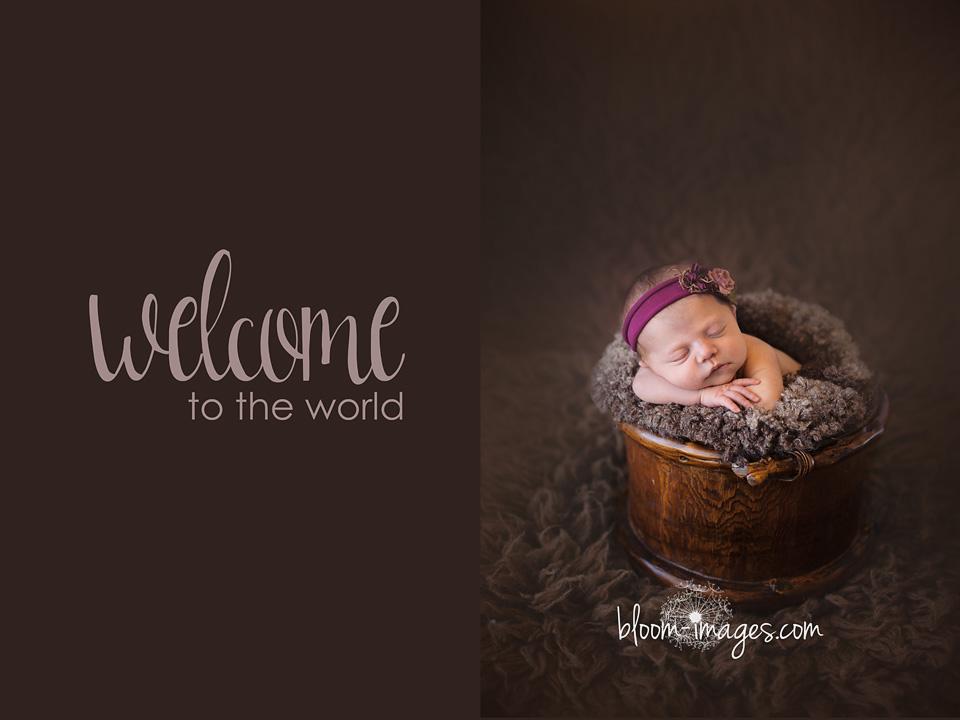 Newborn baby photos in arlington va bloom images photography by sylvia osinski
