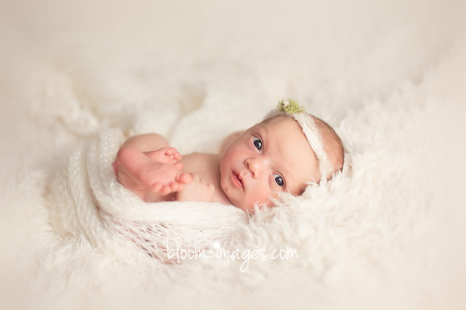 Newborn Baby Photography in Northern VA, by Sylvia Osinski
