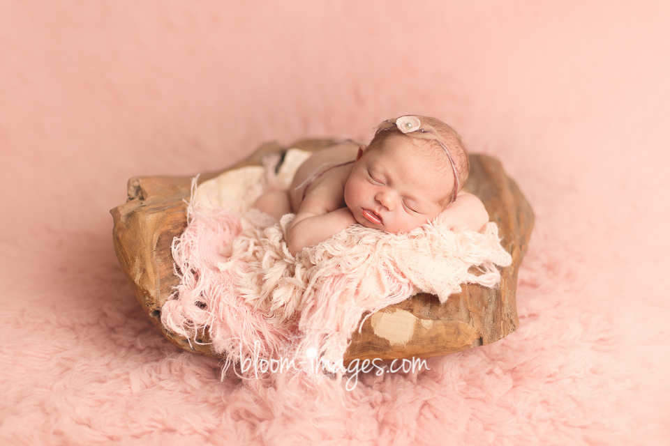 Newborn Baby Image in Restonn VA, by Bloom Images