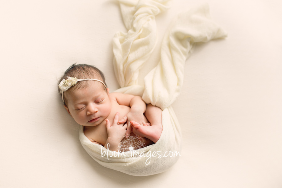 Northern VA Newborn Photographer Baby Wrapped