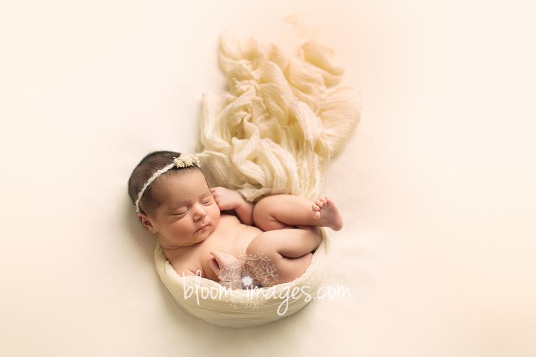 Best Newborn Photography in Northern VA