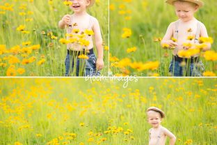 Family-Photographer-Northern-VA-Baby-Styled-Session