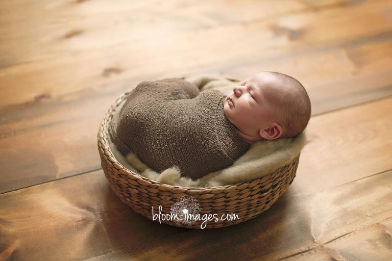 Baby Photos Ashburn VA