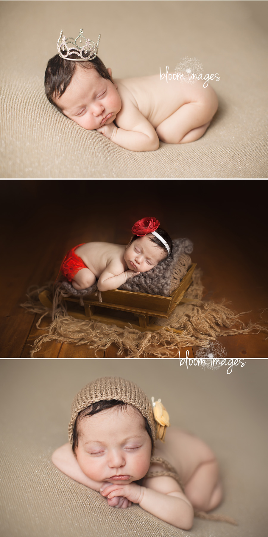Fairfax county newborn photographer infant baby studio session