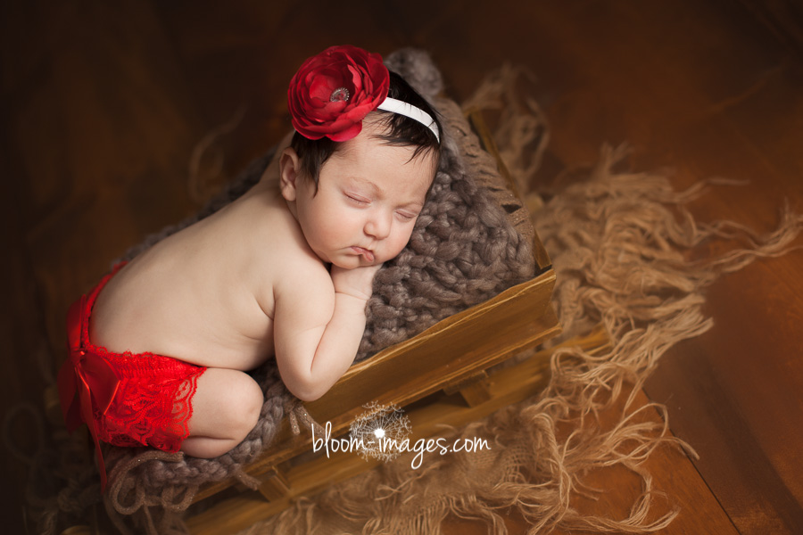 Newborn baby photography in Northern VA baby in sleigh