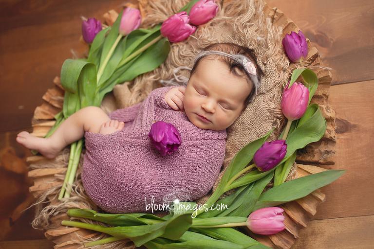 Leesburg VA Newborn Photographer Northern VA Family Photography baby in flowers