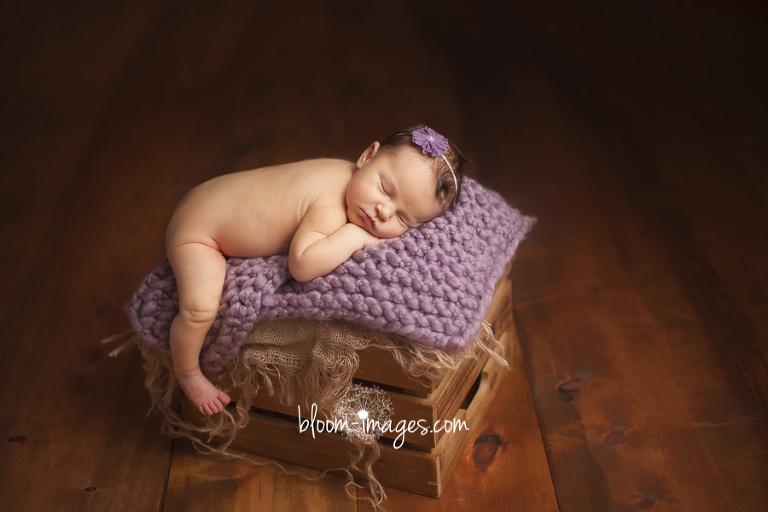 Leesburg VA Newborn Photographer Northern VA Family Photography