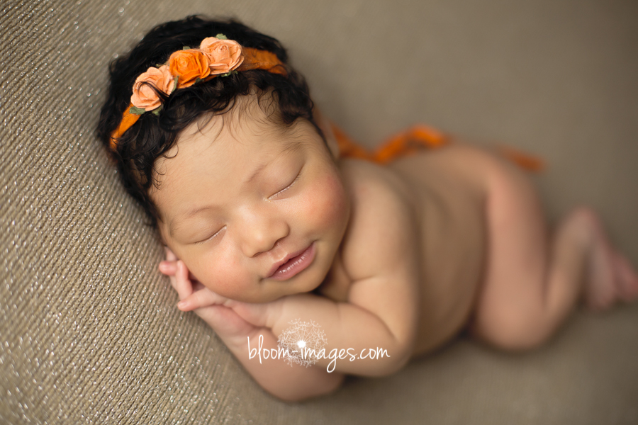 Newborn Photography Northern VA Newborn Baby Posed portrait