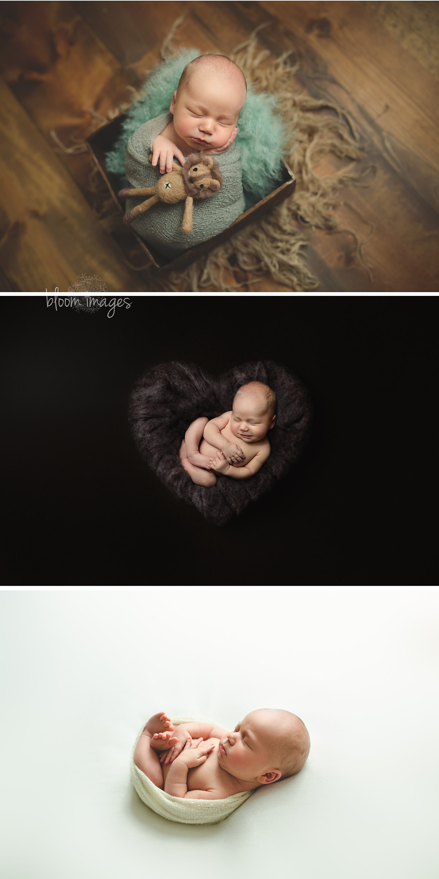 Newborn Photographer Washington DC, and NOVA, heart collage